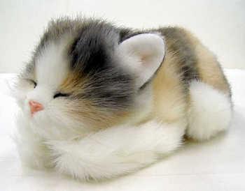 cute33.jpg